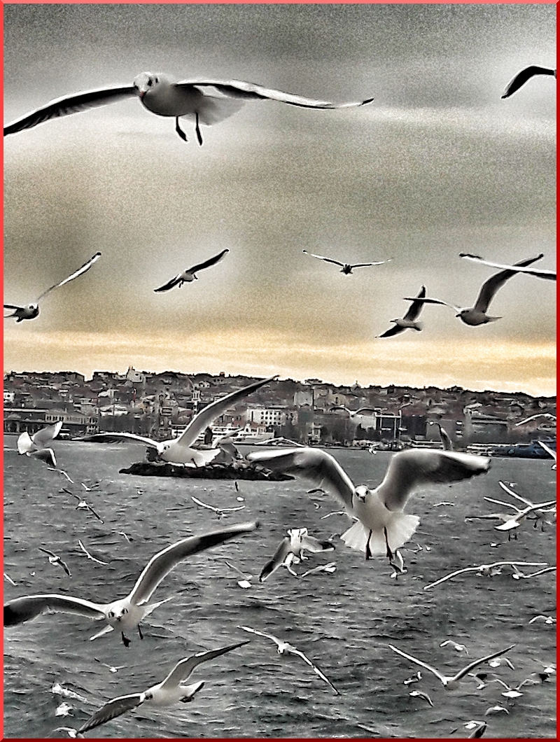 © Fotoğraf: Gülgün Önder